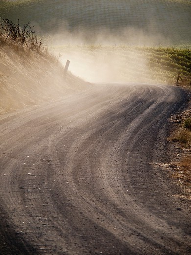 Dust on gravel road near Paso Robles, California, United States America : Stock Photo