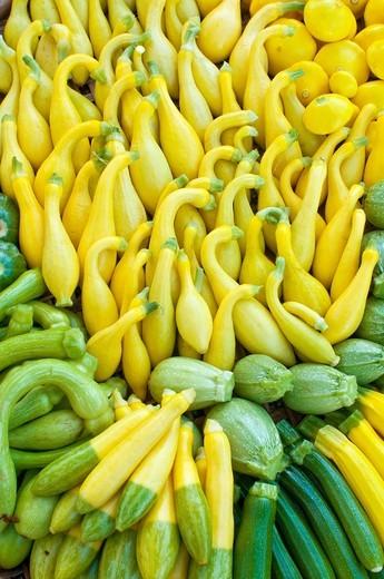Organic squash at Farmers´ Market, Arcata, California : Stock Photo