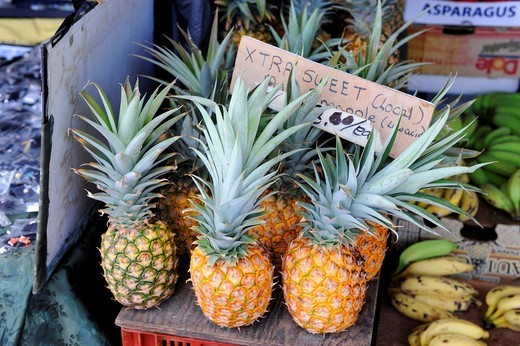 Stock Photo: 1566-616371 Pineapples Shopping Area Kona Kailua Hawaii Pacific Ocean
