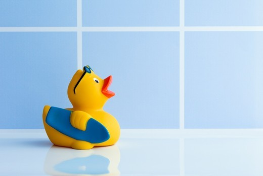 Yellow rubber duck with surfboard : Stock Photo