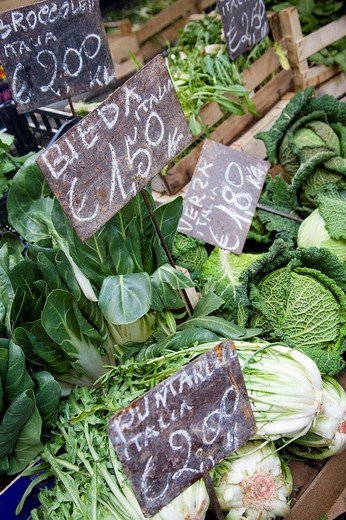 Campo de´Fiori market in Rome, Italy : Stock Photo
