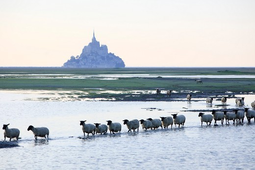 Mont Saint Michel Abbey. Normandy. France : Stock Photo