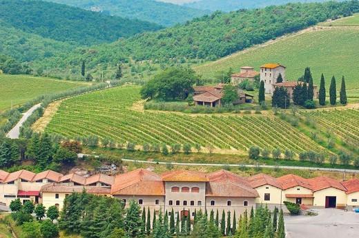 Chianti, Castello di Brolio Cellar, Brolio Castle cellar, Ricasoli Vineyard, Siena Province, Tuscany, Italy. : Stock Photo