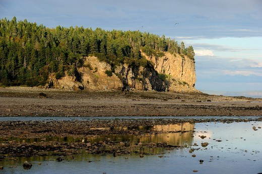 Upper Salmon river at outgoing tide, Bay of Fundy shores at Alma, New Brunswick, Canada : Stock Photo