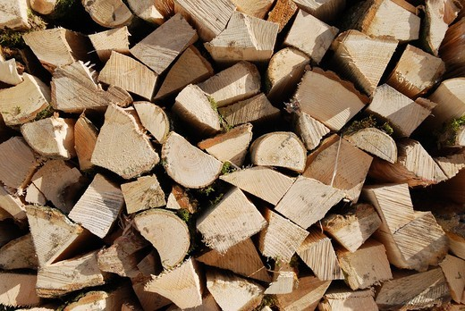 Stacked firewood : Stock Photo