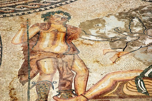 Stock Photo: 1566-623039 Volubilis (Morocco): mosaic in the archaeological site