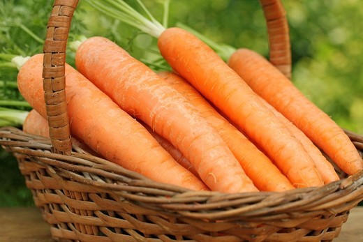 Stock Photo: 1566-629200 Carrots
