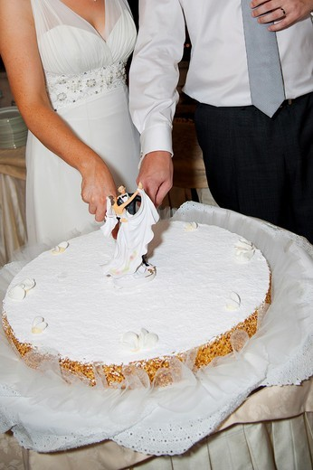 Bride and groom cutting the wedding cake : Stock Photo