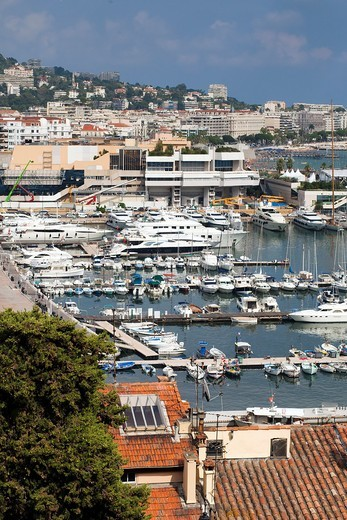 Stock Photo: 1566-630336 Cannes