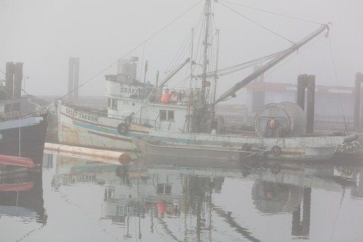Stock Photo: 1566-632210 Scenes from the harbor on a foggy day in Alert Bay on Cormorant Island, British Columbia, Canada