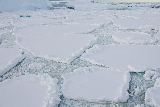 Stock Photo: 1566-632674 Brash ice and first year floe ice often called pancake ice south of the Antarctic Circle on the west side of the Antarctic Peninsula during the summer months  More icebergs are being created as global warming is causing the breakup of major ice shelves an