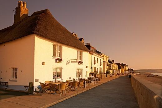 Stock Photo: 1566-635530 England Devon Torcross Seafront houses and café