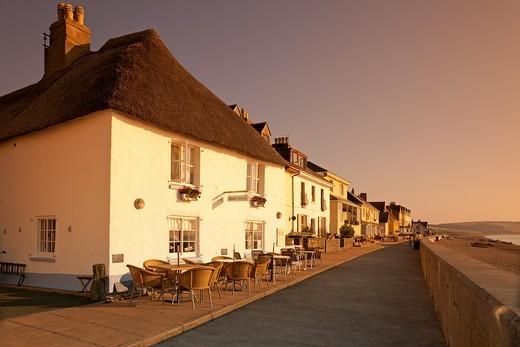 England Devon Torcross Seafront houses and café : Stock Photo