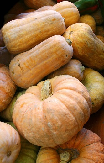 Stock Photo: 1566-638046 Orange pumpkins in a greengrocers