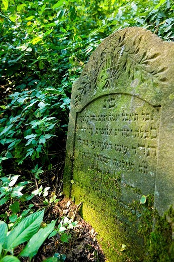 Stock Photo: 1566-639627 Lesko jewish cementery, Poland