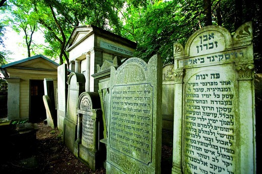 Biggest jewish cementery in Europe. Warsaw jewish cementery, Poland. : Stock Photo