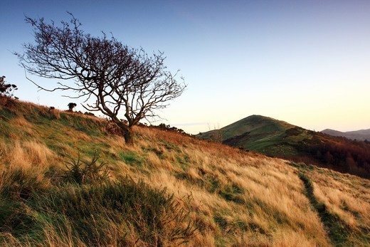 Dusk at the Worcestershire Beacon, The Malvern Hills, Worcestershire, England : Stock Photo
