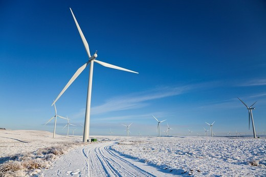 Stock Photo: 1566-644737 Whitelee Wind Turbine farm, in winter with snow and hoarfrost, Eaglesham Moor, Glasgow, Scotland