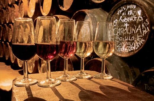 Stock Photo: 1566-650806 Many colours of the Montilla-Moriles wines: from the dark ´Pedro Ximenez Reserva´, passing to the ´Amontillado´, to the light ´Fino´, at the Bodega Toro Albala in Aguilar de la Frontera. Córdoba province, Andalusia, Spain