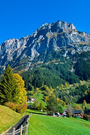 Stock Photo: 1566-675815 Grindelwald, Swiss Alps, Canton Bern, Switzerland