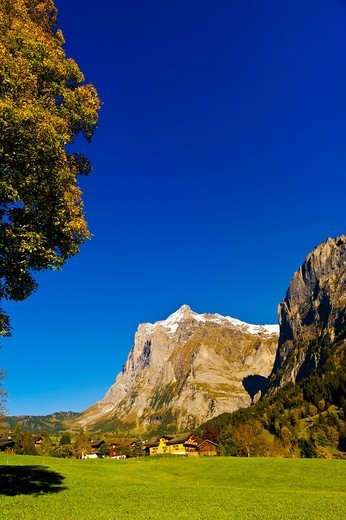 Stock Photo: 1566-675822 Grindelwald, Swiss Alps, Canton Bern, Switzerland