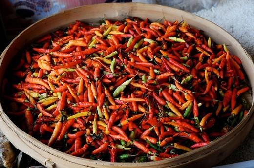 Hot peppers, Bali, Indonesia : Stock Photo