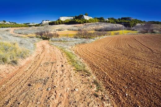 Stock Photo: 1566-677222 Road in the fields of La Guardia Toledo Castilla la Mancha Spain