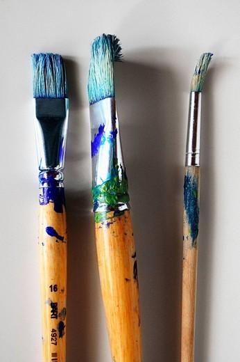 Stock Photo: 1566-677676 Brushes.