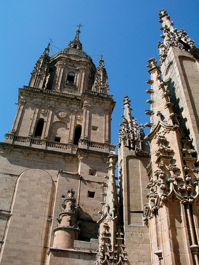 Stock Photo: 1566-679304 Tower of new cathedral, Salamanca. Castilla-Leon, Spain
