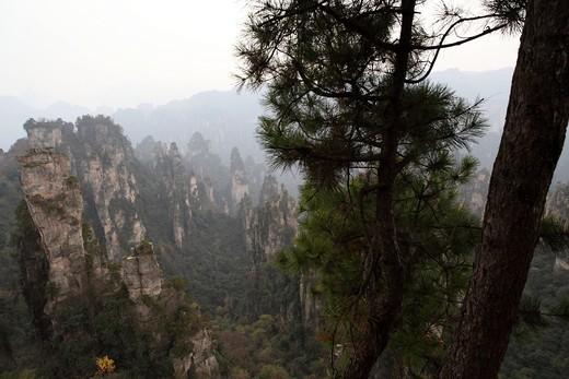 Stock Photo: 1566-680889 Hunan, Zhangjiajie National Forest Park, Zhangjiajie, Beauty in Nature, Mt Tianzi, Mount Tianzi