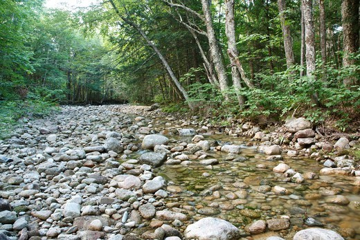 Downes Brook along the Kancamagus Highway route 112 which is one of New England´s scenic byways in the White Mountains, New Hampshire USA : Stock Photo