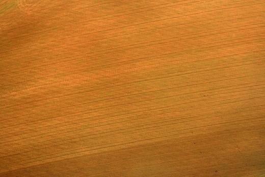 Fields near Berga  Barcelona province  Catalonia  Spain : Stock Photo