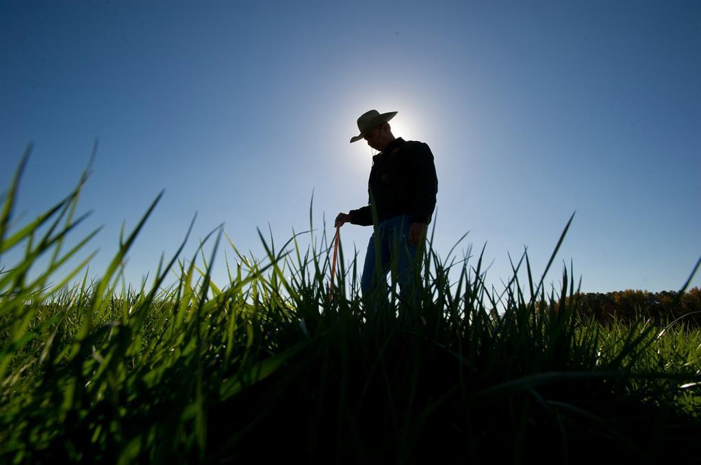 Stock Photo: 1566-683835 Farmer in the field