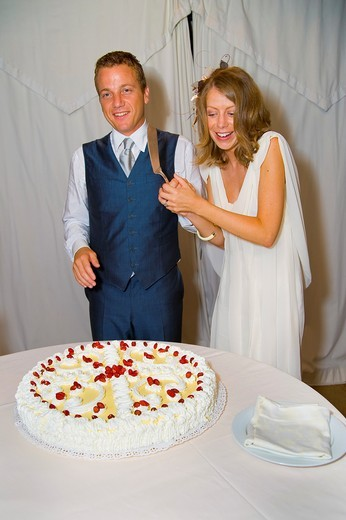 Bride and groom cutting wedding cake : Stock Photo