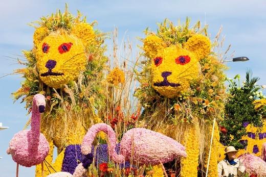 detail of allegorical vehicle, Flower Parade, Noordwijk, Netherlands : Stock Photo