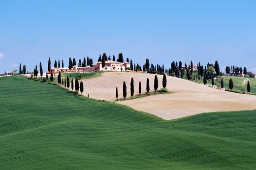Hilltop villa surrounded by farmland, Tuscany, Italy : Stock Photo