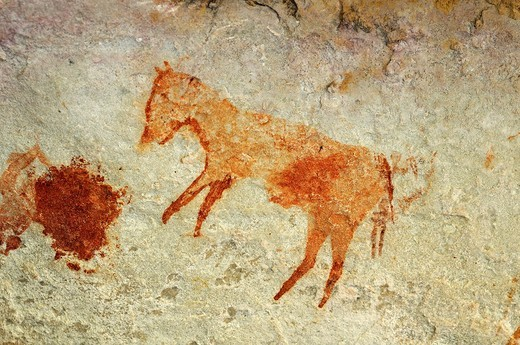 Presumed depiction of an extinct quagga zebra, prehistoric rock paintings by the San people along the Sevilla Rock Art Trail near Clanwilliam, Cederberg Mountains, Western Cape Province, South Africa : Stock Photo