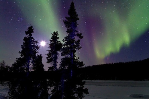 Aurora Borealis Northern Polar Lights and waxing moon over the boreal forest outside Yellowknife, Northwest Territories, Canada, MORE INFO The term aurora borealis was coined by Pierre Gassendi in 1621 from the Roman goddess of dawn, Aurora, and the Greek : Stock Photo