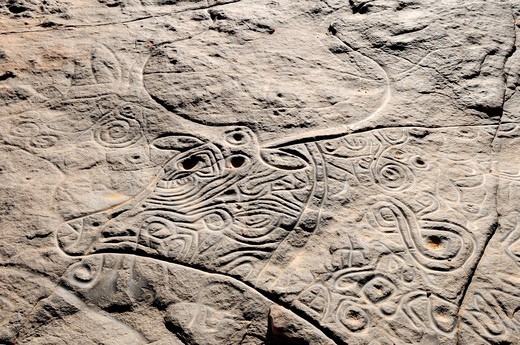 rock engraving of the famous curly cow, neolithic rockart at Tinterhert, Dider Valley, Tassili n´ Ajjer National Park, Unesco World Heritage Site, Wilaya Illizi, Algeria, Sahara, North Africa : Stock Photo