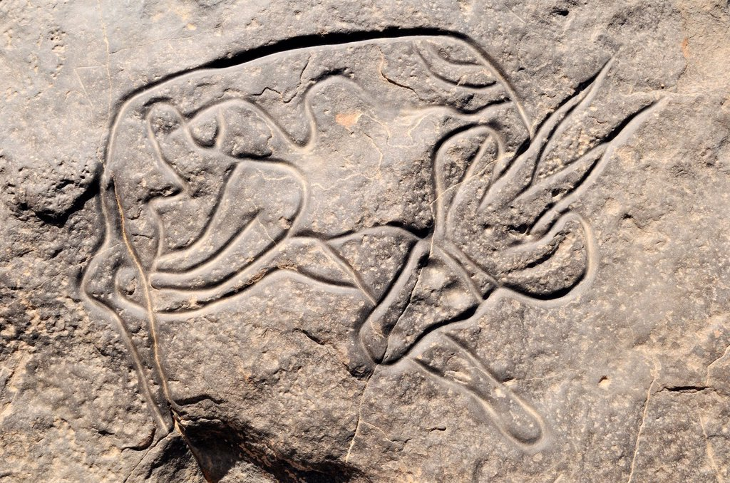Stock Photo: 1566-690070 famous rock engraving of a sleeping gazelle, neolithic rockart at Tinterhert, Dider Valley, Tassili n´ Ajjer National Park, Unesco World Heritage Site, Wilaya Illizi, Algeria, Sahara, North Africa