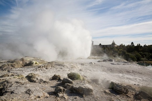 Rotorua North Island New Zealand  Pohutu geyser erupting steaming water from sulphurous mud and rock in Te Puia in Whakarewarewa Thermal Reserve in geothermal valley : Stock Photo