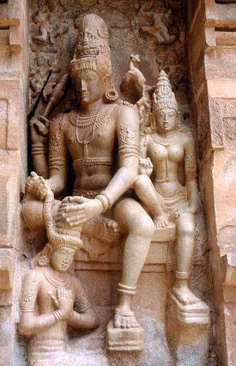 Stock Photo: 1566-696316 Relief of Shiva on wall of Vimana. Temple of Gangaikondacholisvara. Gangaikonda Cholapuram. Tamil Nadu, India
