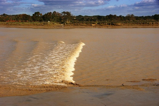 Tidal bore going up the estuary of the Gironde by the Margaux island, Gironde, Aquitaine, France : Stock Photo