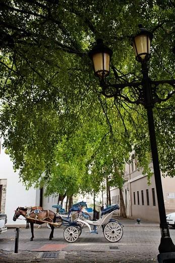 Street, Santo Domingo, Dominican Republic, West Indies, Caribbean : Stock Photo