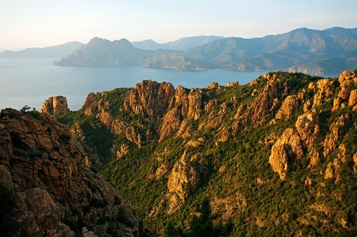 Stock Photo: 1566-706273 Les Calanches de Piana, Corsica, France
