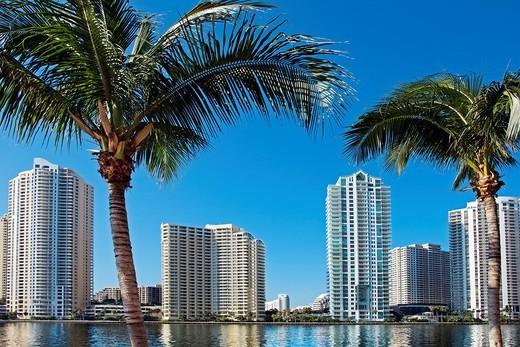 Brickell Island, Downtown Miami, Miami, Florida, USA : Stock Photo
