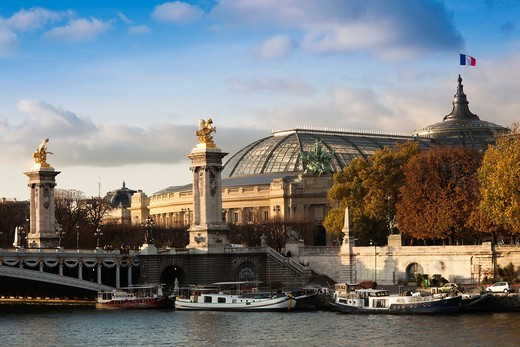 France, Paris, Grand Palais and Pont Alexandre III bridge : Stock Photo