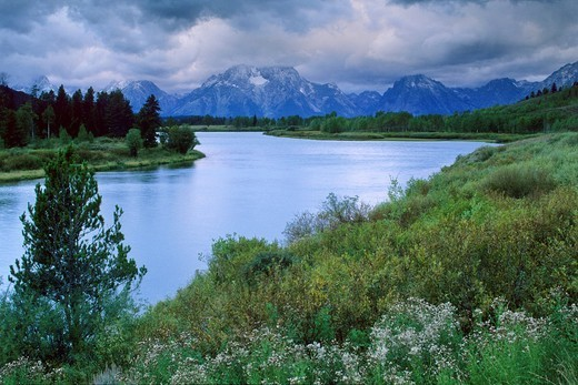 Stock Photo: 1566-712358 Clouds shroud Mt  Moran on a stormy morning at Oxbow Bend, Snake River, Grand Teton National Park, WYOMING