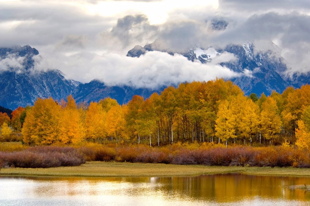 Aspen trees and fall storm clouds over Mount Moran, at Oxbow Bend, Snake River, Grand Teton National Park, Wyoming : Stock Photo