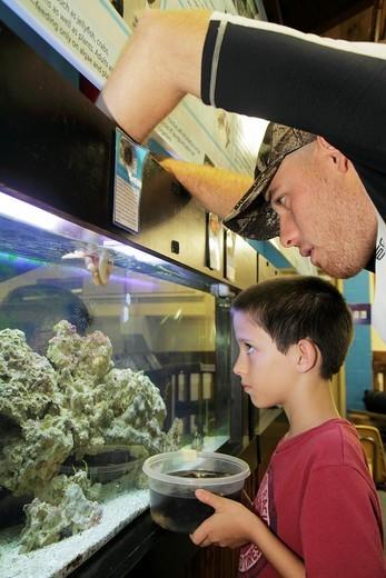 Florida, Boca Raton, Gumbo Limbo Environmental Complex and Nature Center, aquarium, : Stock Photo